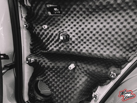 Volkswagen Tiguan. Шумоизоляция дверей _7